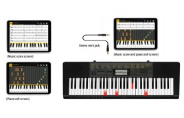 Vì sao nên mua đàn Organ Casio phím sáng cho bé?