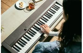 Những cây organ Casio giá tốt dành cho người mới