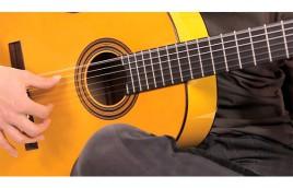Kapok LC: Giải pháp Guitar chất lượng cho sinh viên