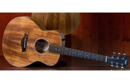 Review Guitar Taylor GS-Mini
