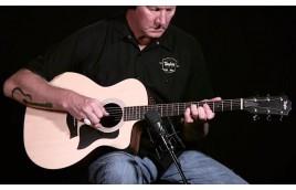 Giới thiệu một số cây guitar thuộc series Taylor 100