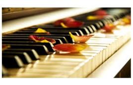 Mua đàn Piano mới: Sự đầu tư khôn ngoan