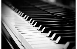 7 điều cần lưu ý trước khi chọn mua đàn Piano cơ