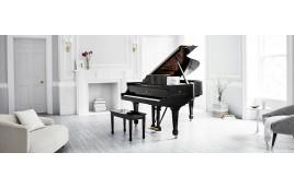 Xuất xứ của những thương hiệu Piano nổi tiếng thế giới - Phần 1
