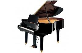 Giá của một cây đàn piano cơ thường là bao nhiêu?