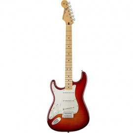 Guitar Fender Strat Stand...
