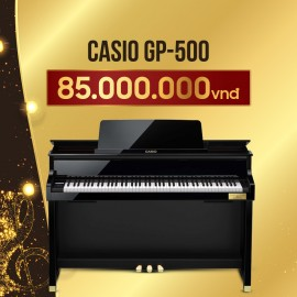 Casio GP-500