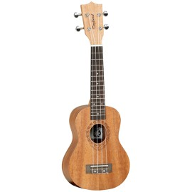 Tanglewood TWT1
