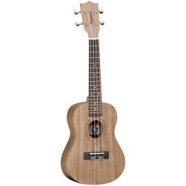 Tanglewood TWT3