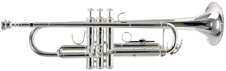 Selmer TR650S được mạ bạc