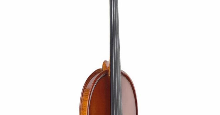 Violin Kapok MV005 ¾