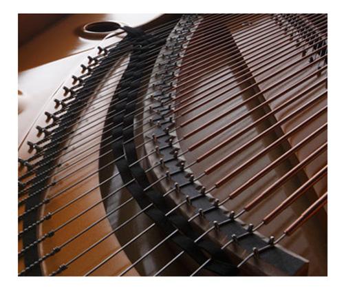 Ngựa đàn đóng vai trò quan trọng trong việc truyền những rung động của dây đàn