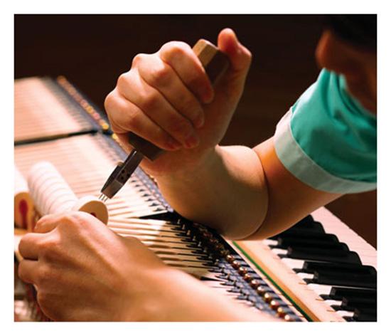 Búa đàn Shiko Seion là thiết kế độc quyền của Kawai.