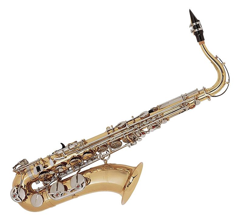 Kèn Saxophones Selmer TS500 thu hút sự chú ý của người chơi bởi thiết kế đẳng cấp